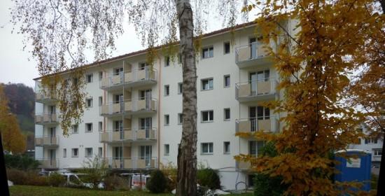 Sanierung Mehrfamilien-häuser Landstr. 158-164, Wettingen AG (20.Jh.); 2012
