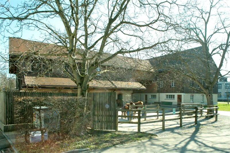 Sanierung/Umnutzung Ökonomiegeb. EPI, Bleulerstr. 30, Zürich. (19.Jh.); 2004
