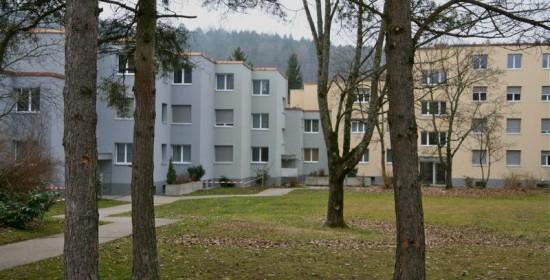 Sanierung Wohnsiedlung mit 50 Wohnungen, Wildbachstr. 9-25, Embrach ZH (20.Jh.); 2010